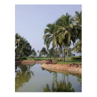 Goa India Postcard