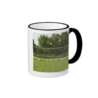 Goal Full of Balls Mug