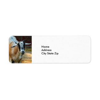 Goat 551 return address label