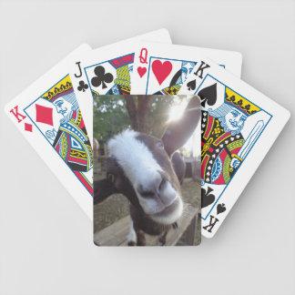 Goat poker