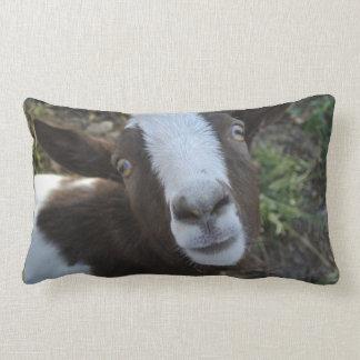 Goat Barnyard Farm Animal Lumbar Cushion