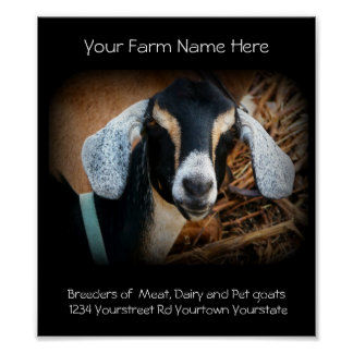 Goat Breeder Business Poster