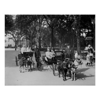 Goat Carriage Ride, early 1900s Poster