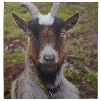 Goat close up. napkin