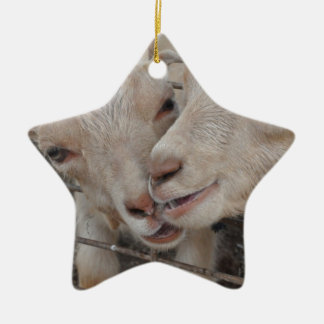 Goat Couple Ceramic Star Decoration