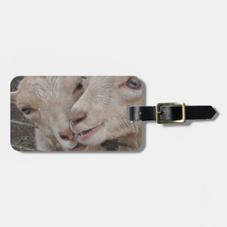 Goat Couple Luggage Tag
