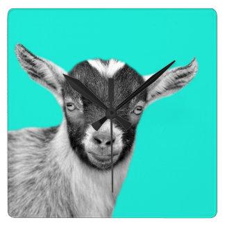 Goat farm animal photo nursery black and white square wall clock
