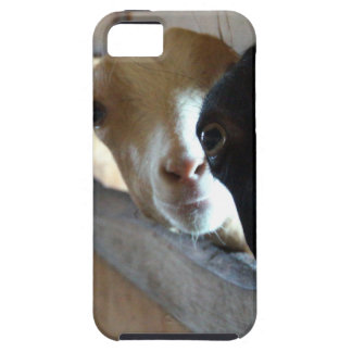 Goat Focus Case For The iPhone 5