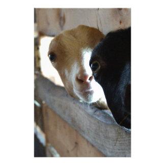 Goat Focus Stationery