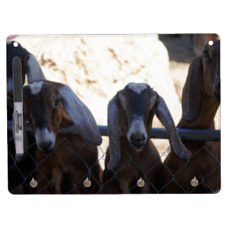 Goat Gathering Dry Erase Board With Key Ring Holder