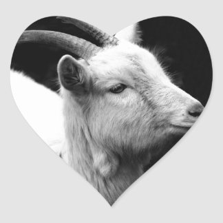 goat heart sticker