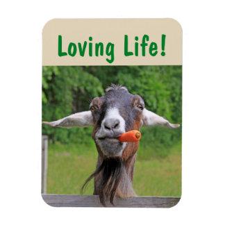 Goat Inspiration Magnet