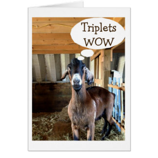 GOAT IS SO EXCITED=TRIPLETS=TRIPLE THE LOVE CARD