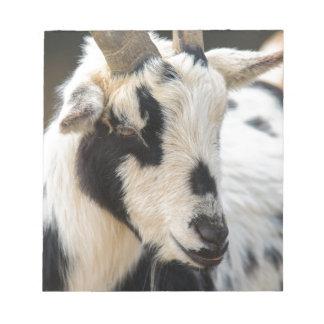 Goat portrait notepad