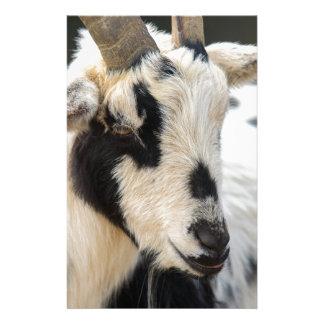 Goat portrait stationery