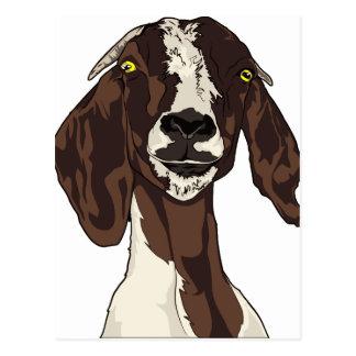 goat postcard