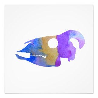 Goat Skull Art Photo Print
