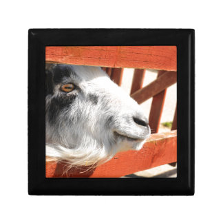 Goat Small Square Gift Box