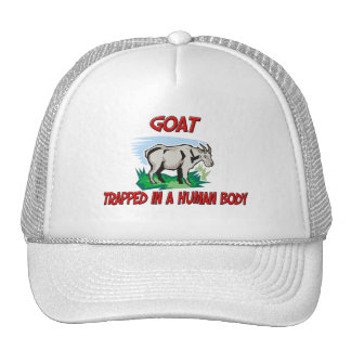 Goat trapped in a human body hat