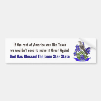 God Bless Texas Mockingbird & Bluebonnet Bumper Sticker