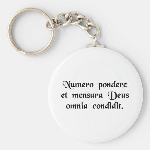 God created everything by number, weight and..... keychain
