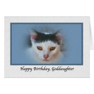 Goddaughter's Birthday Card with Cat