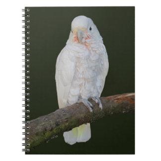 Goffy Notebook