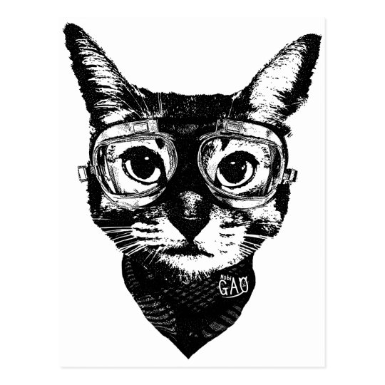 Goggles Cat Postcard