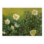 Gogh Wild Roses Blossoms Flowers Vines Vintage Art Postcard