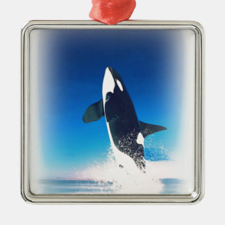 Going for the Breach Killer Whale Silver-Colored Square Decoration