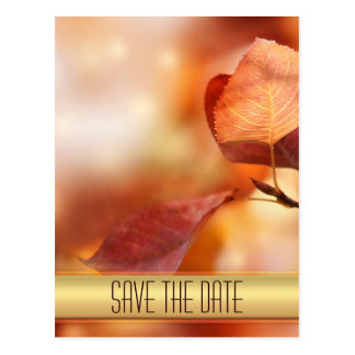 Gold Autumn Leaves Save the Date Postcard