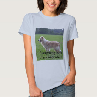 Gold border collie tees