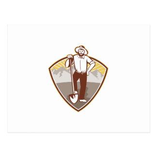 Gold Digger Miner Prospector Shield Postcards