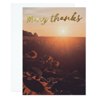 GOLD EMBOSSES MANY THANKS CARD