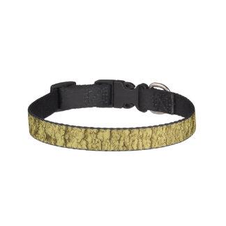Gold Flakes Pet Collar
