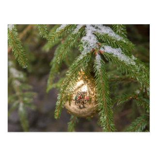 Gold Glass Christmas Ornament On Evergreen Tree Postcard