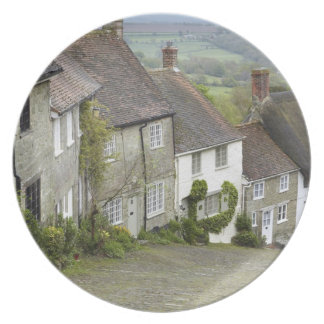 Gold Hill, Shaftesbury, Dorset, England, United Party Plates