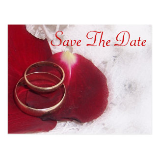 Gold Rings Rose Petals Save The Date Wedding Postcard