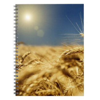 Gold wheat and blue sky with sun notebooks