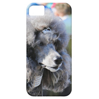 Goldberg - Chanel - Standard Poodle Barely There iPhone 5 Case