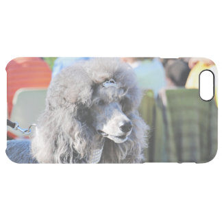Goldberg - Chanel - Standard Poodle Clear iPhone 6 Plus Case