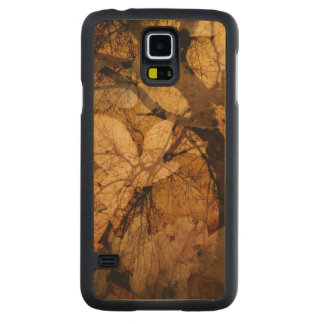 Golden and Brown Leaves | Merritt Island, FL Carved Maple Galaxy S5 Case