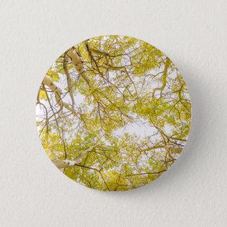 Golden Aspen Forest Canopy 6 Cm Round Badge