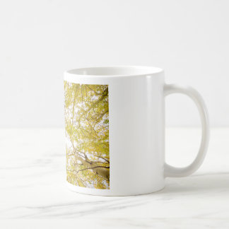 Golden Aspen Forest Canopy Coffee Mug