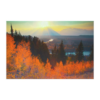 Golden Aspens Above Snake River At Sunset Gallery Wrap Canvas