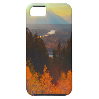 Golden Aspens Above Snake River At Sunset iPhone 5 Case