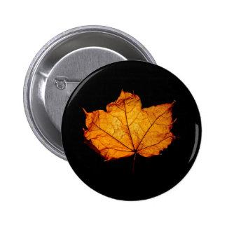 Golden Autumn Leaf Pinback Buttons
