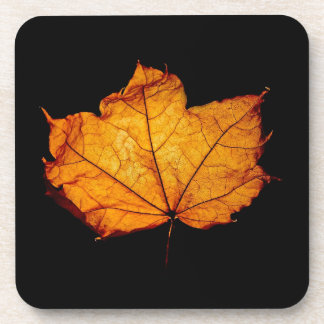 Golden Autumn Leaf Drink Coaster