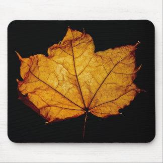 Golden Autumn Leaf Mousepad