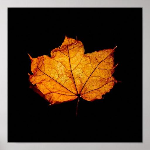 Golden Autumn Leaf Print